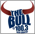 TheBull Logo